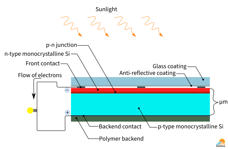 The cross-sectional view of monocrystalline solar cells
